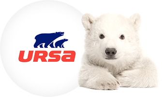 ursa ours